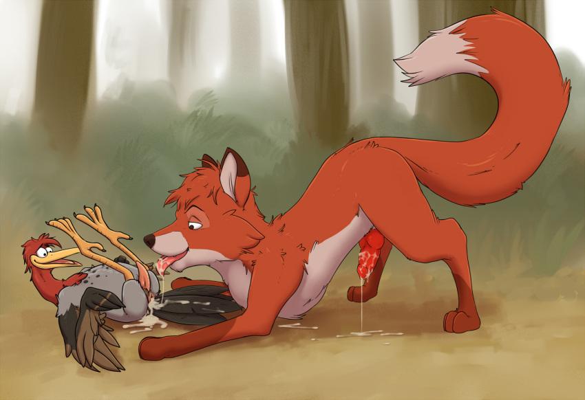 the fox trax brown lapfox quick Maou sounanchu!!!